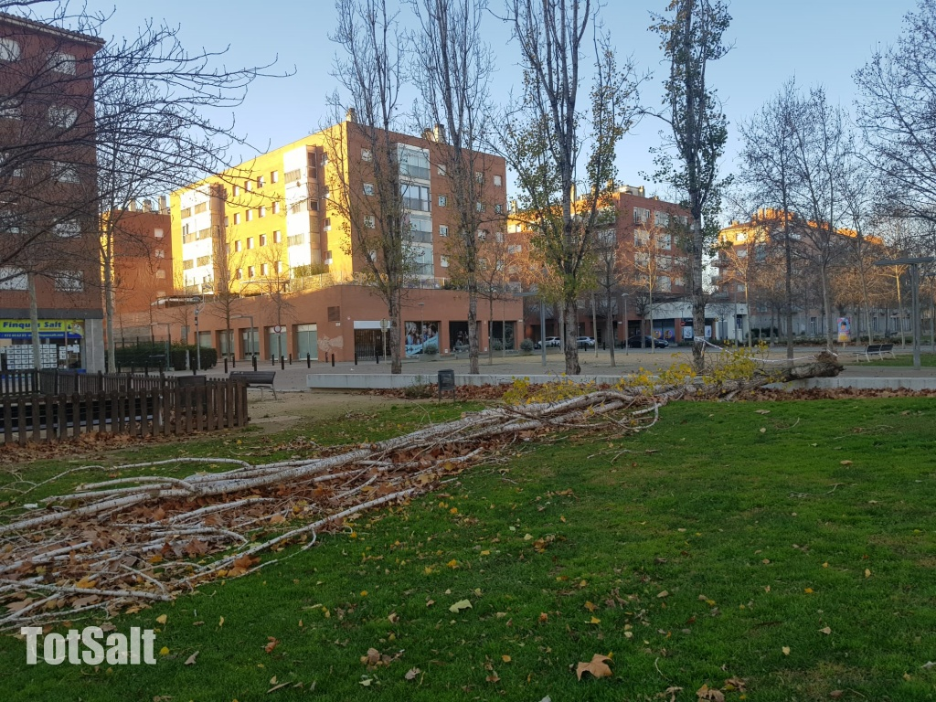 Forts Vents a Salt Girona